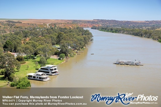 Walker Flat Ferry, Murraylands from Forster Lookout