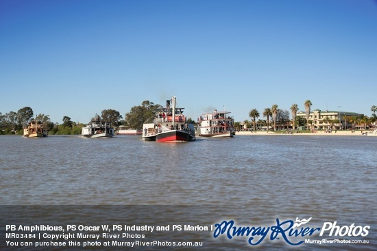 PB Amphibious, PS Oscar W, PS Industry and PS Marion leaving Renmark for Mildura