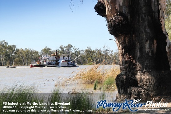 PS Industry at Murtho Landing, Riverland