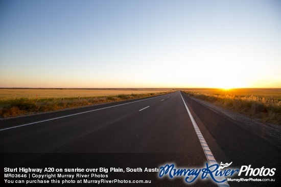 Sturt Highway A20 on sunrise over Big Plain, South Australia