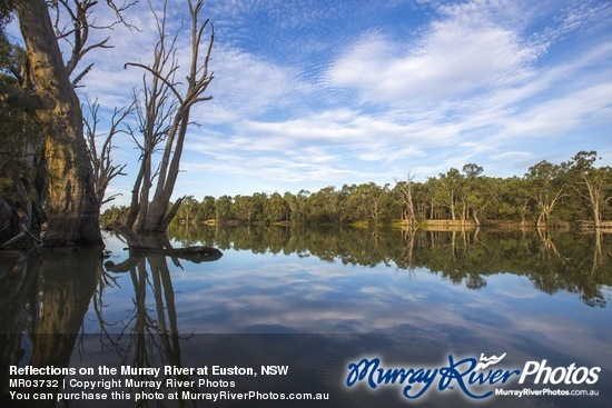Reflections on the Murray River at Euston, NSW
