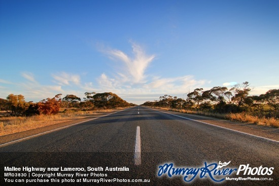 Mallee Highway near Lameroo, South Australia