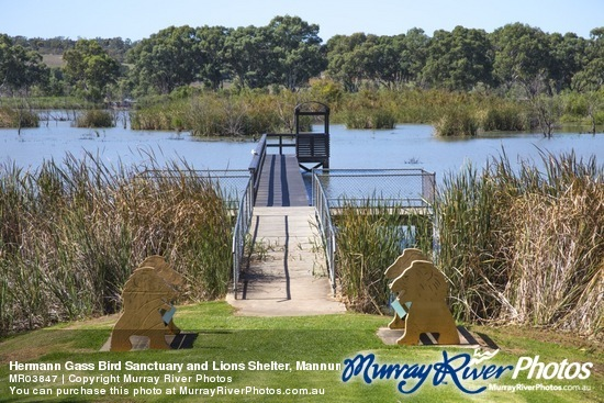 Hermann Gass Bird Sanctuary and Lions Shelter, Mannum