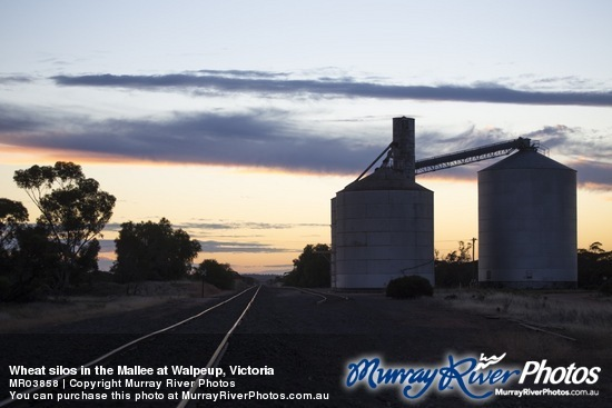 Wheat silos in the Mallee at Walpeup, Victoria
