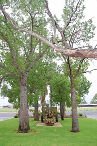 Barmera War Memorial, Riverland