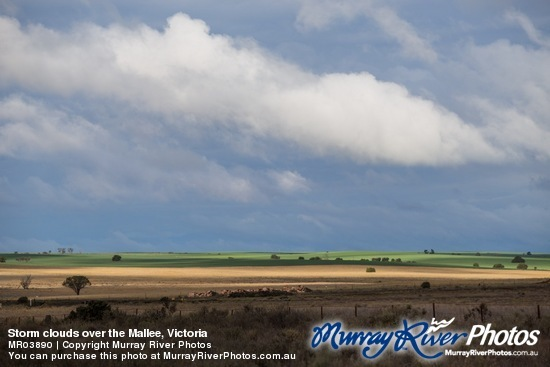 Storm clouds over the Mallee, Victoria