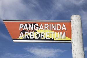Pangarinda Arboretum