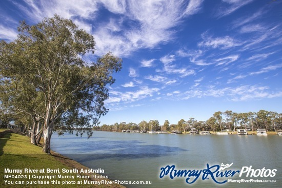 Murray River at Berri, South Australia