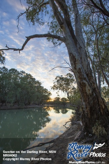 Sunrise on the Darling River, NSW
