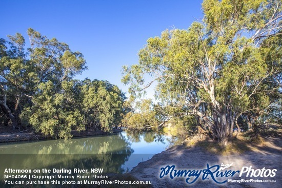 Afternoon on the Darling River, NSW
