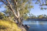 Darling River, NSW