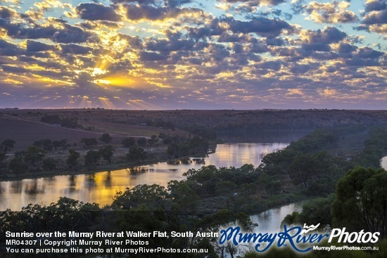 Sunrise over the Murray River at Walker Flat, South Australia