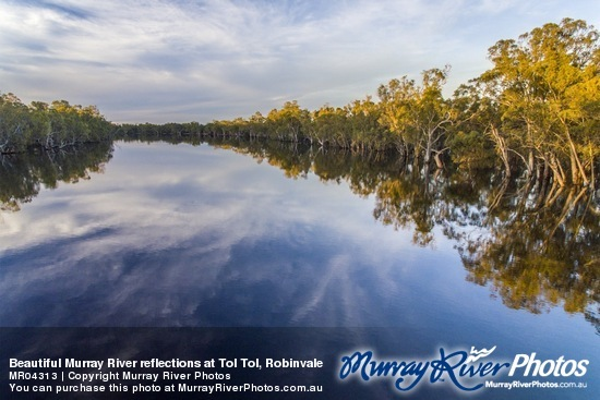 Beautiful Murray River reflections at Tol Tol, Robinvale