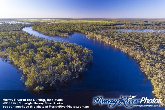 Murray River at the Cutting, Robinvale
