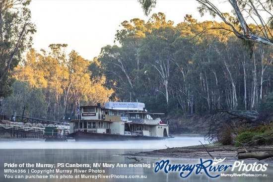 Pride of the Murray; PS Canberra; MV Mary Ann morning in Echuca