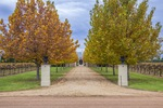 Driveway at Renmark, South Australia