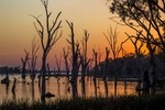 Lake Mulwala sunset at Collendina, NSW