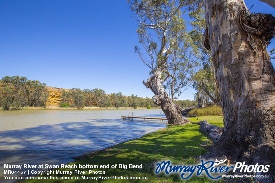 Murray River at Swan Reach bottom end of Big Bend