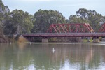 Paringa Bridge with pelicans, calm day on te Murray River, Riverland
