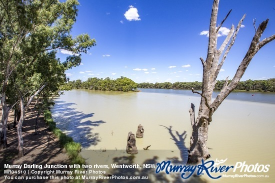 Murray Darling Junction with two rivers, Wentworth, NSW